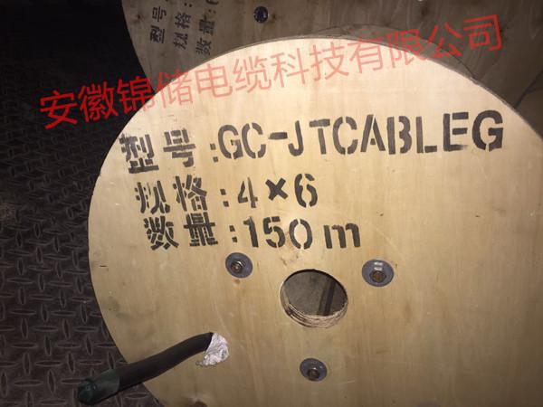 卷筒乐动体育注册,型号GC-JTCABLEG,规格10*2.5